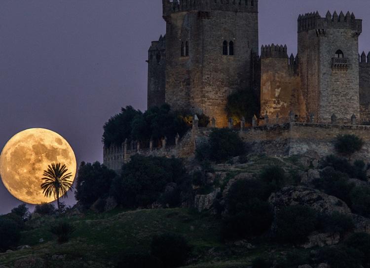Castles_SpainInside_Almodovar3
